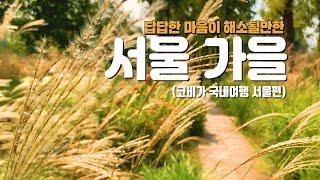 서울 가을 가볼만한 곳 숨겨진 히든스팟 랜선…