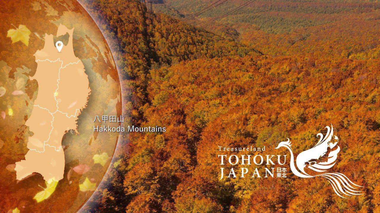 The Four Seasons TOHOKU JAPAN