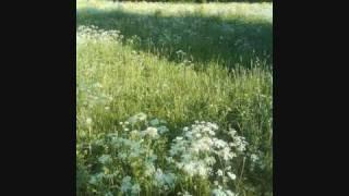 Mamba - Vielä on kesää jäljellä