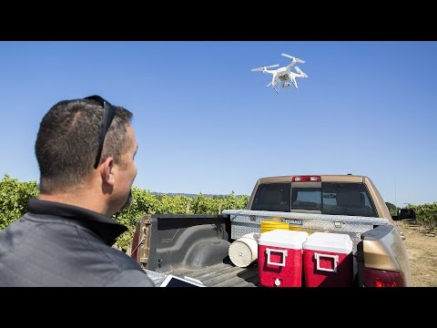 Oregon viticulturist tests drone technology to improve vineyard results