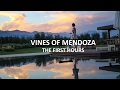 Mendoza Series: The First Hours at Vines of Mendoza