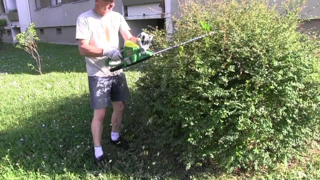 Super Gartentipp: Sträucher richtig schneiden - YouTube BT64