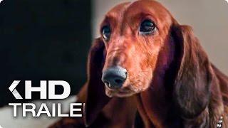 WIENER-DOG Trailer (2016)
