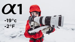 Sony A1 Review in EXTREME Conditions - Worth it?!