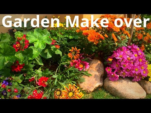 Garden make over || Balcony/Terrace Garden make over ideas || Backyard Gardening