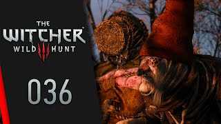 The Witcher 3: Wild Hunt #036 ⚔️ Leiht mir euer Ohr | Let's Play The Witcher 3: Wild Hunt