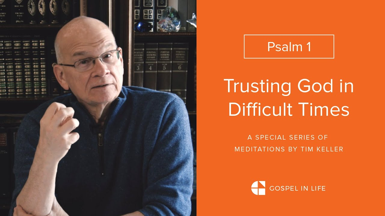 How to Become Evergreen - Psalm 1 Meditation by Tim Keller