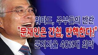 """워마드 주부들의 반란 """"문재인은 간첩, 탄핵한다!"""" (진성호 직썰) / 신의한수"""