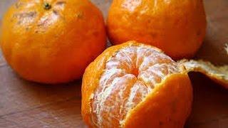 Como Cultivar Mandarina - TvAgro por Juan Gonzalo Angel