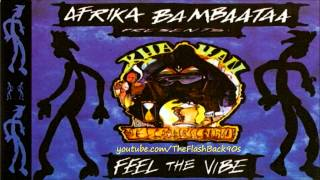 Afrika Bambaataa - Feel The Vibe (Extended Mix)