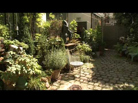 Comment Am Nager Un Jardin En Ville Cr Ation D 39 Un Petit Jardin De Ville Youtube