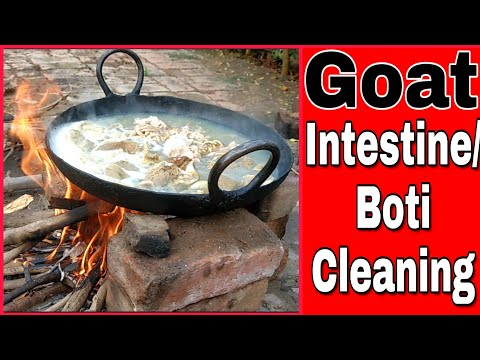 How To Clean Goat Intestine || How To Clean Boti In Hindi