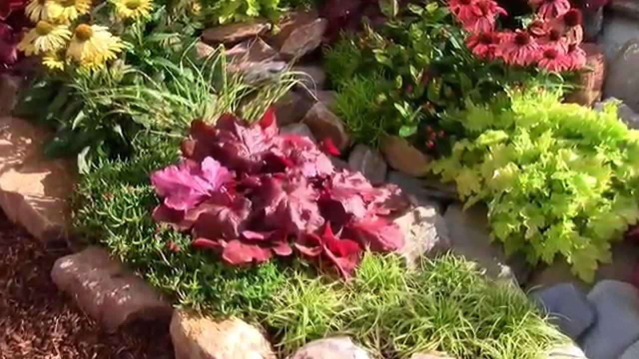 herbstzauber garten winterharte stauden und bl hpflanzen