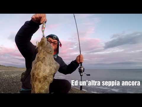 Clipangler - Eging! Pesca alla seppia con strike in diretta!