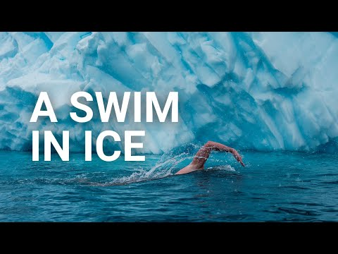 A swim in the ice - #Antarctica2020
