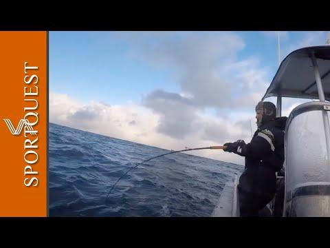 Skrei Cod Fishing 2018