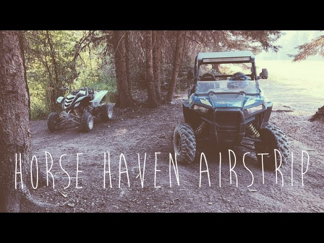 HORSE HAVEN AIRSTRIP!!!
