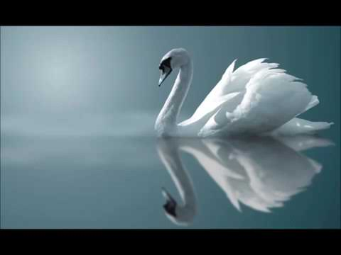 Очень красивая музыка 🎶🎧🎶😍 yoqimli muzika