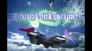 Ariella Emmy Studio (recycled Water Bottle Bird Feeder!)
