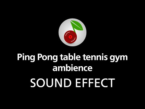 Ping Pong table tennis gym ambience