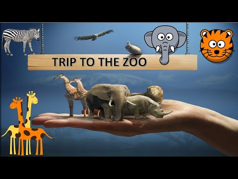 jeddah asfan zoo | asfan zoo jeddah | jeddah zoo | jeddah vlogs | Open Zoo | Zoo Tour & Review
