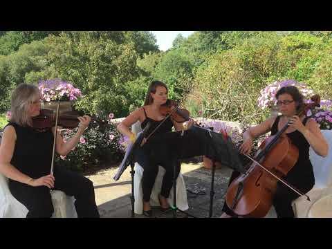 Stringendo String Trio - la Rejouissance