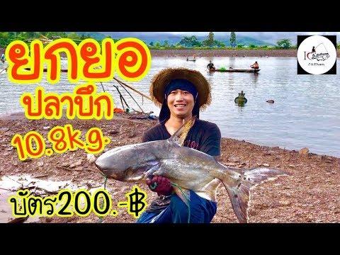 ยกยอ อ่างเก็บน้ำห้วยสร้อยศรี Fishing lifestyle Ep.97