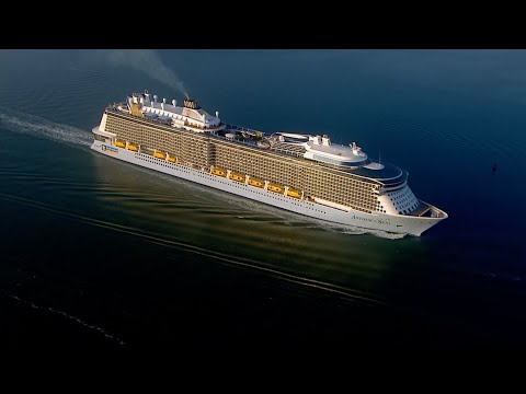 Royal Caribbean Thanks Emergency Services, NHS And Armed Forces...