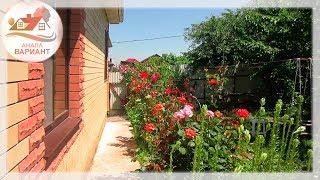 Красивые розы в саду. Купить дом в Анапе рядом с морем в с.Супсех