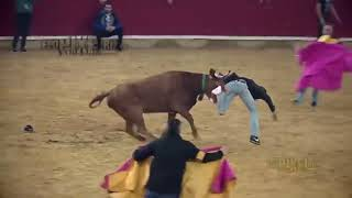 Dangerous Bull Fight Accidents Compilation 2019 Lucky and Funny People Fail Video Clips