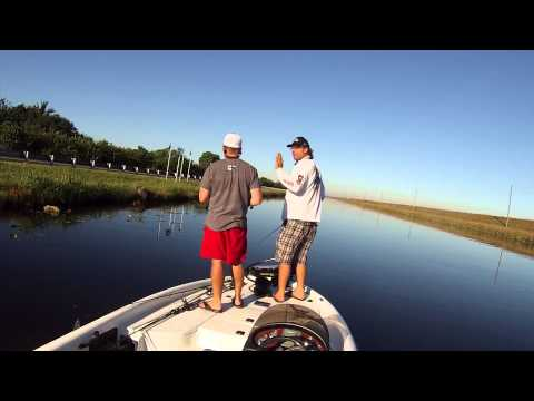 Tamiami Trail FL Bass Fishing with Mike BLM Lendl