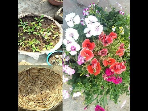 How to make beautiful flowers basket.  Correct use of waste item