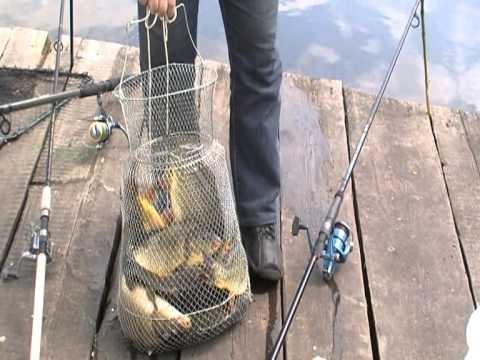 платная рыбалка фрязево