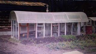 теплица своими руками из оконных рам 5.20х 2.80  с овальной крышей(5 лет назад построил парник из оконных рам б\у и задумал сделать округлую крышу. на крышу сделал поликарбона..., 2014-08-18T09:19:43.000Z)