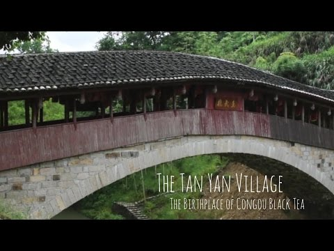 Tan Yang Village Tour - The Birthplace of Congou Black Tea
