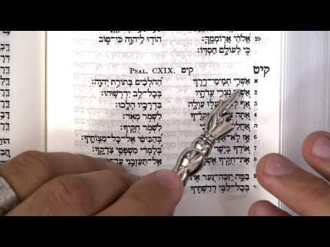 Read Psalm 119 - the love song to God's Torah - in Hebrew! | Part 1 of 4 | TRAILER