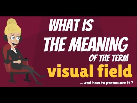 What is VISUAL FIELD? What does VISUAL FIELD mean? VISUAL FIELD meaning, definition & explanation