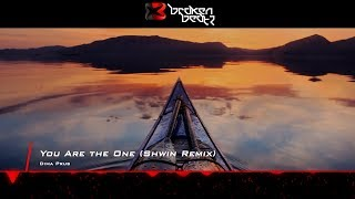 Dima Prus - You Are the One (Shwin Remix) [Music Video] [Emergent Shores]