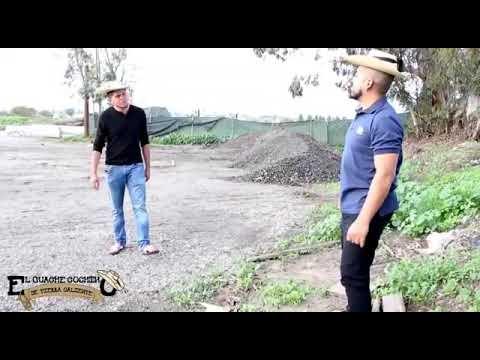 El Guache Que No Supo Zapatear 😂🤣💯 Ft Adrian Estrada