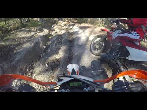 Tasmania Dirt Bike Riding | Scottsdale | Good Tracks and Sta