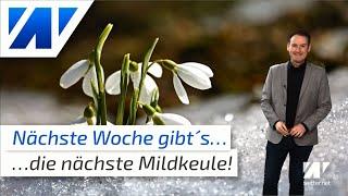 Mildkeule schlägt zu: 16°C am heutigen Donnerstag und nächste Woche neue Wärmespitze!
