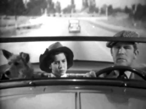 Dangerous Holiday (1937) HEDDA HOPPER