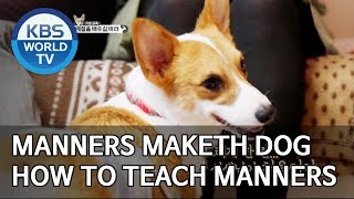 Manner Maketh Dog [Dogs are incredible/ENG/2019.12.04]