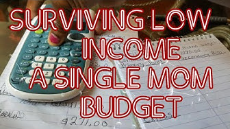 SURVIVING LOW INCOME A SINGLE MOMS BUDGET