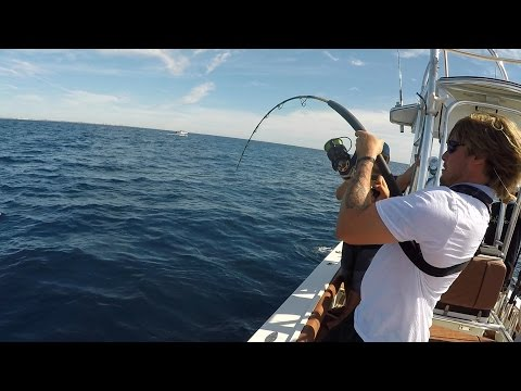 CATCHING AN AMBERJACK IS IMPOSSIBLE!!! (Offshore Saltwater F