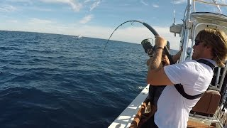 CATCHING AN AMBERJACK IS IMPOSSIBLE!!! (Offshore Saltwater Fishing in Florida)