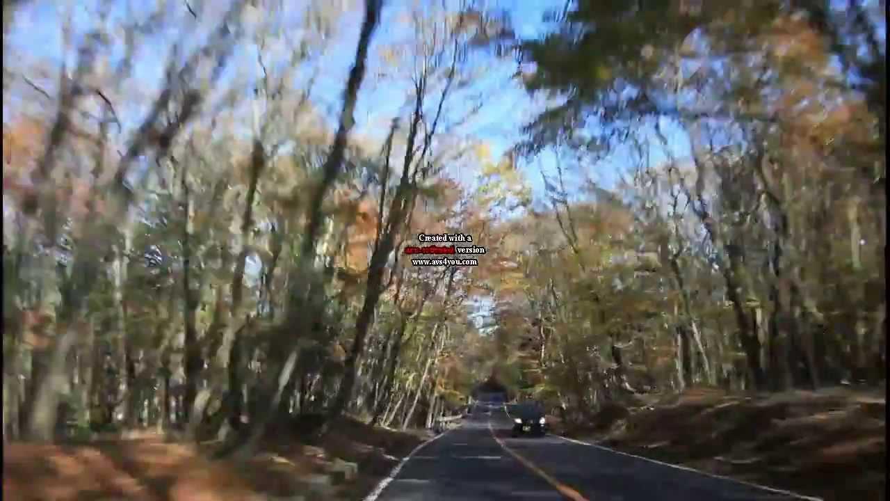 2013.11.8青木ヶ原樹海の紅葉 - YouTube