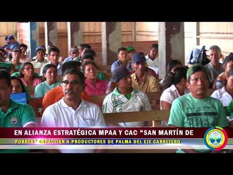 EN ALIANZA ESTRATÉGICA MPAA Y CAC SAN MARTÍN DE PORRES CAPACITAN A PRODUCTORES DE PALMA