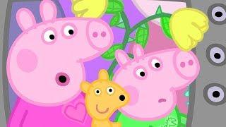 小猪佩奇   精选合集   1小时   和猪爷爷猪奶奶一起看电视 ???? 粉红猪小妹 Peppa Pig Chinese  动画