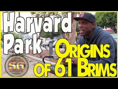 Moose discusses Harvard Park Brim and Menlo Gangster Crip history